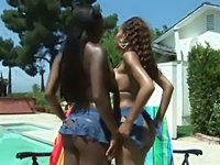 Juicy chocolate asses