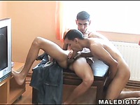 Big Dick Sucking