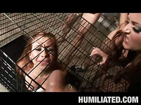 Scarlett Pain cum-disgrace video 35
