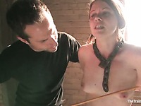 Lilla Katt the-training-of-o clip 6