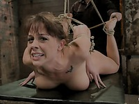 Chanel Preston hog-tied movie 40