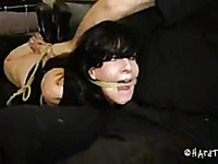 Elise Graves Hard Tied movie 22