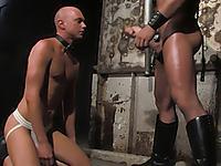 Master Tober Brandt and slave Chet